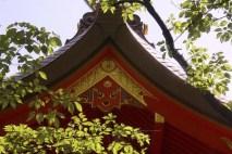 20100512_051011-IMG_0474_ji copy