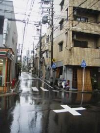 20100523_030647-P5230279_ji copy