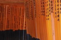 20100524_082018-IMG_3860_ji copy