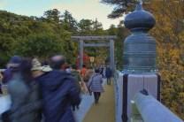 20131215_052646_IMG_5615_ji copy