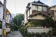 IMG_0593_ji copy