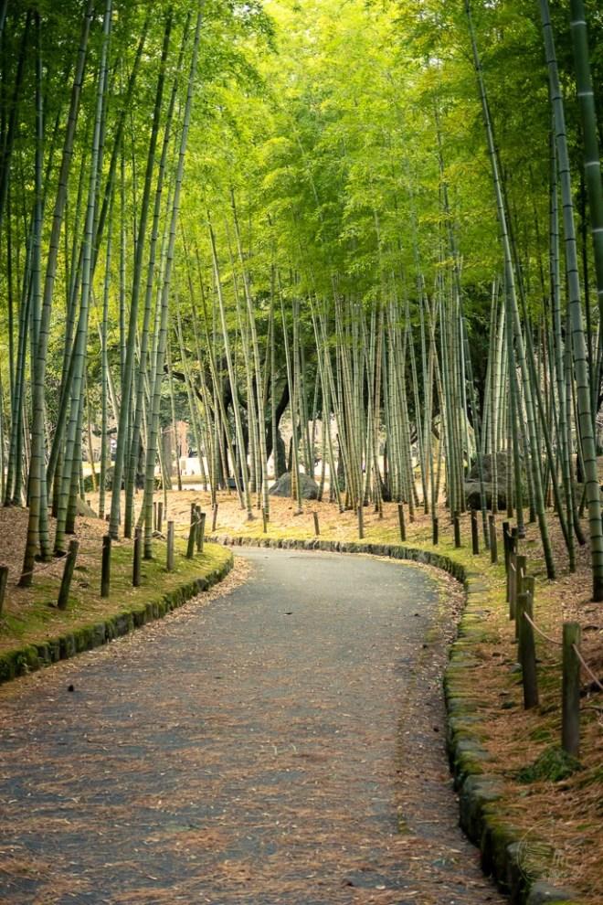 Japan (2019) - 044 Beppu Stadtpark