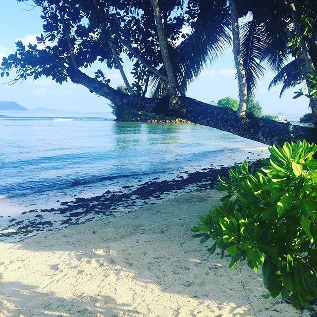 Next island - La Digue #seychelles
