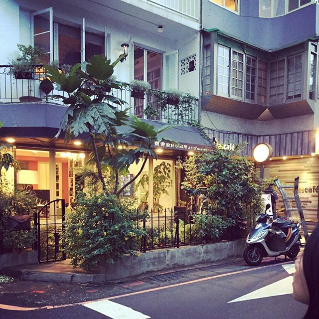 Lush vegetation makes for beautiful storefronts #taipei #alleys