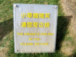 """THE GRASS IS SMILING AT YOU. PLEASE DETOUR."""