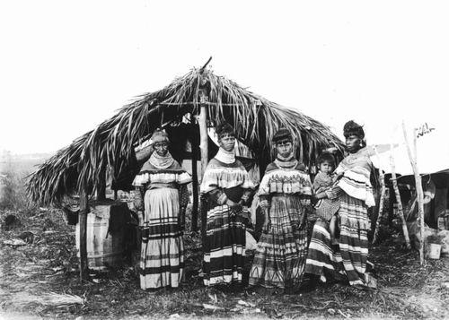 10. Seminole_family_Cypress_Tiger