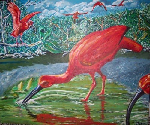 Asa Wright Nature Center, Trinidad - Serenity