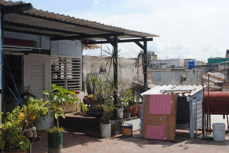 Luis Enrique Camejo's studio