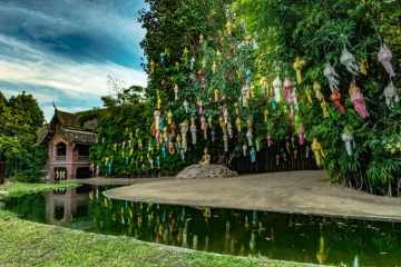 Colorful lanterns on green tree in Buddhist temple Wat Phan Tao, Chiang Mai, Thailand