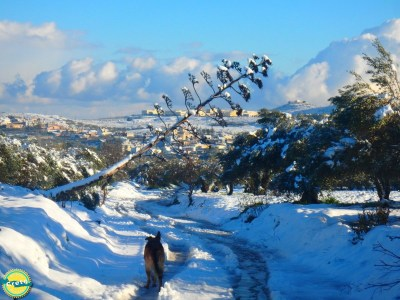 Winter en sneeuw op Kreta