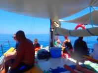 Zomer excursies op Kreta (4)