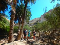 Zomer excursies op Kreta (6)
