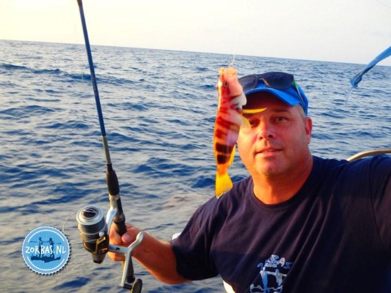 Vissen tijdens boottocht Kreta