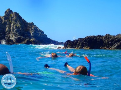 actieve-snorkelvakantie zomer 2021