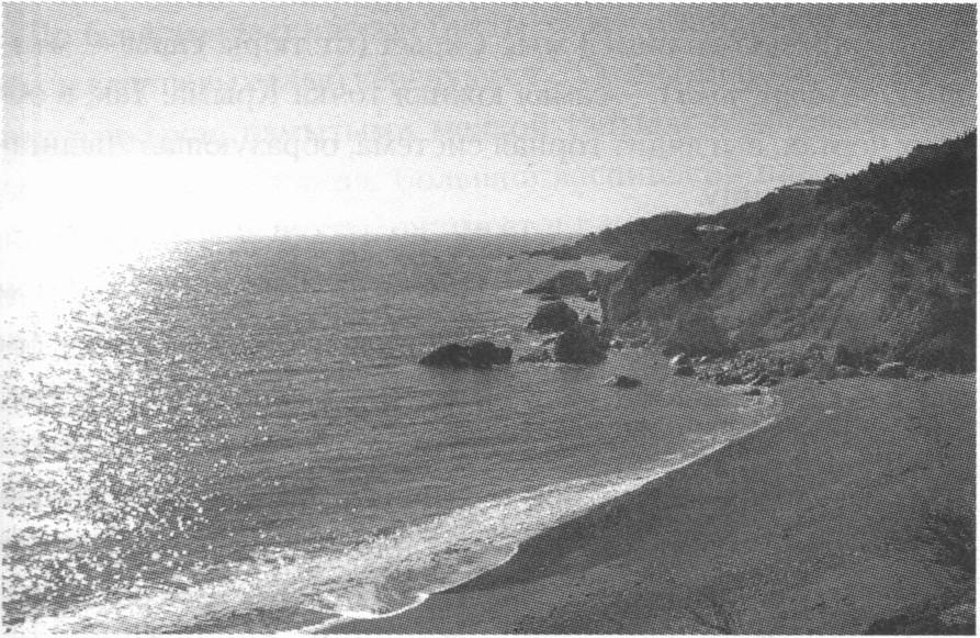 Берег Ласпинской бухты