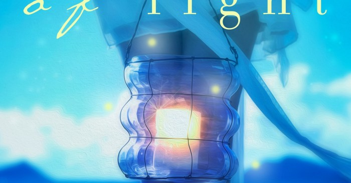 COVER REVEAL & GIVEAWAY: PLAY OF LIGHT by Debra Doxer