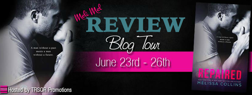 repaired blog tour review