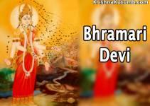 Bhramari Devi - Arunasur - Krishna Kutumb