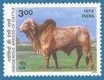 Gir Cow Stamp