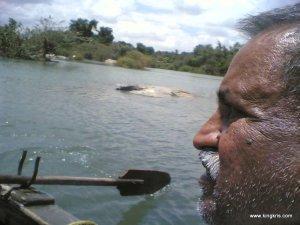 Boat ride in Ranganathittu bird sanctury