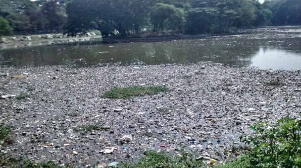 Halasuru lake filled with garbage