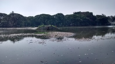 A view of polluted halasuru lake
