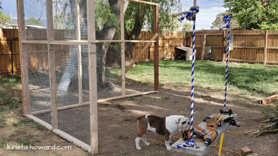 DIY Chicken Coop Walls
