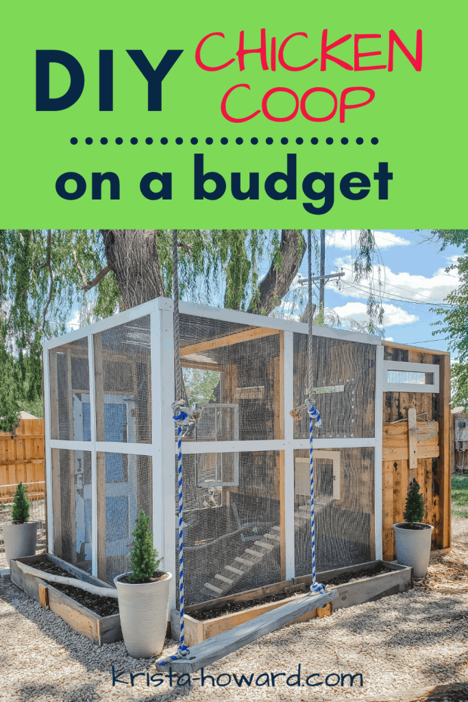 DIY Chicken Coop on a Budget