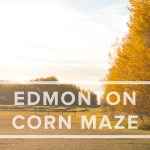 Ella's Trip to the Edmonton Corn Maze