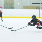 How Can We Make Hockey More Green? #RealiceCA