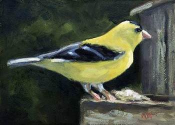 Goldfinch - small daily oil painting