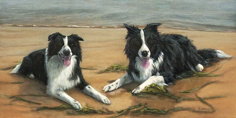 Border Collies Finished – commission Oil WIP