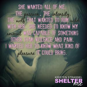 SHELTER ME TEASER 3