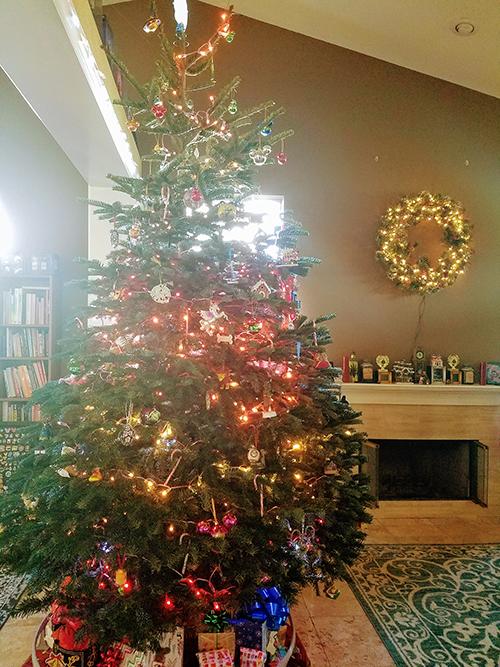 My family's large tree
