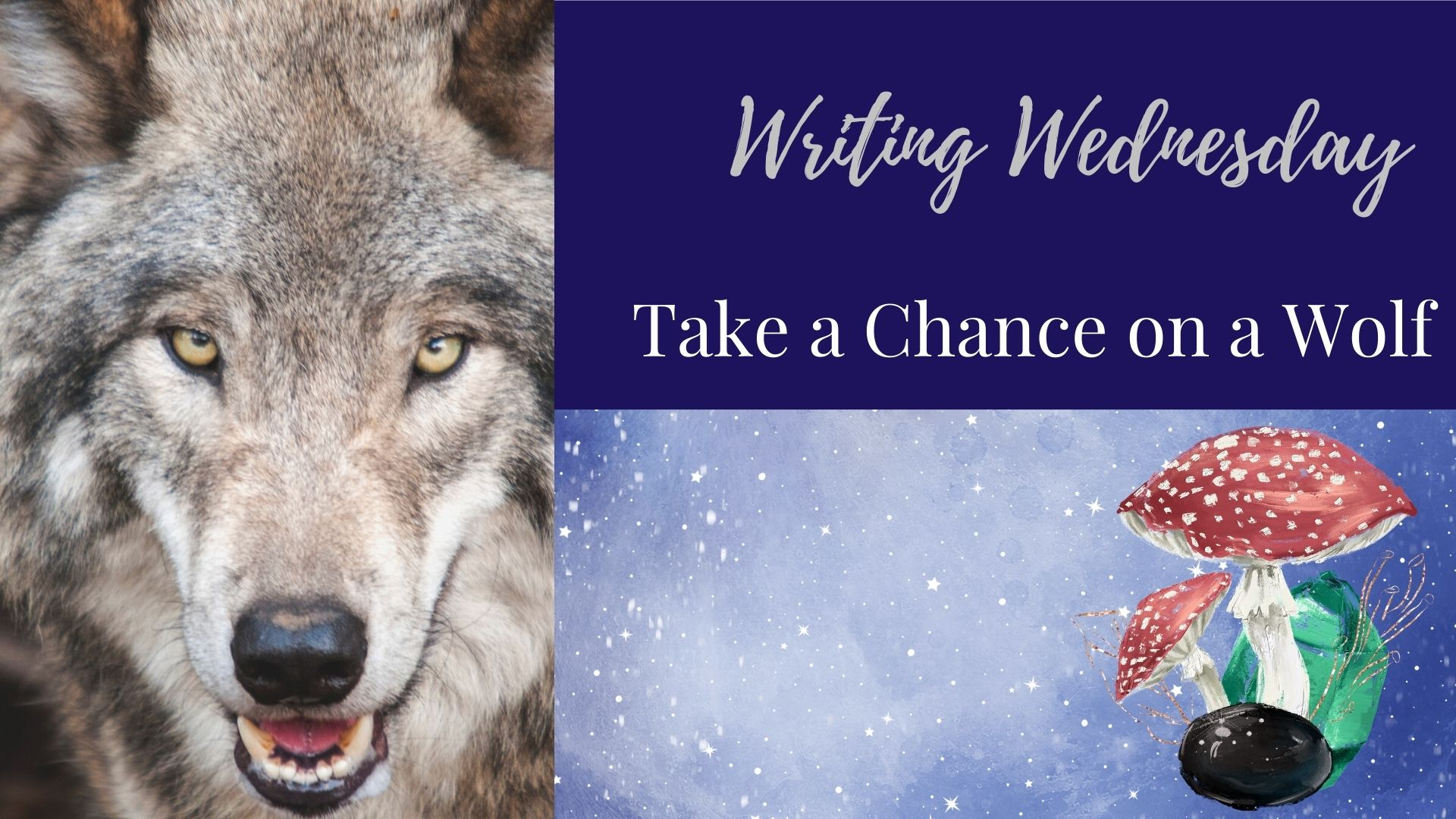 Writing Wednesday: Take a Chance on a Wolf