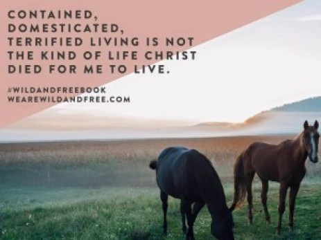 contained, domesticated, terrified living is not the kind of life christ died for me to live.