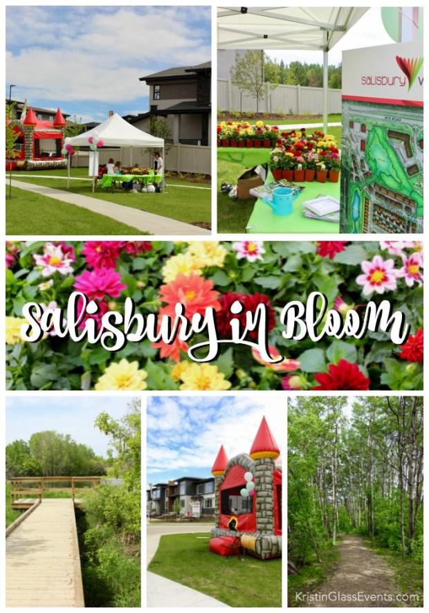 community-event-salisbury-in-bloom-pinterest-image