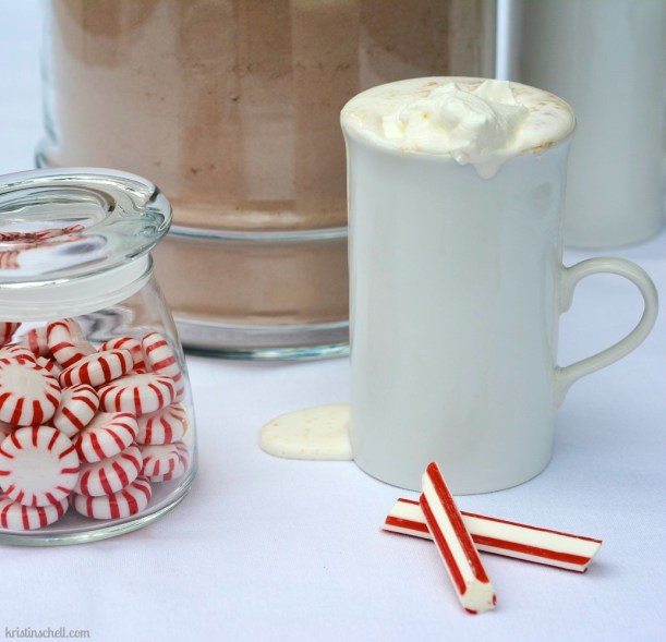 Hot Chocolate Mix for a Crowd   kristinschell.com