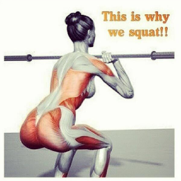 This is why we squat