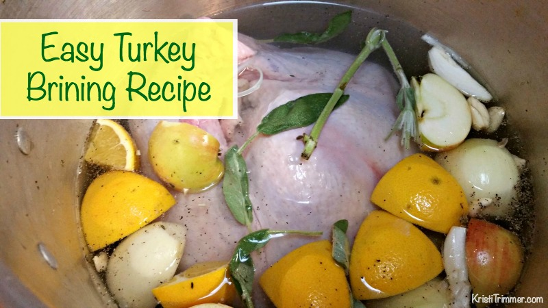 Easy Turkey Bringing Recipe