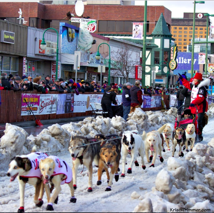 2015 Iditarod Aliy Zurkle