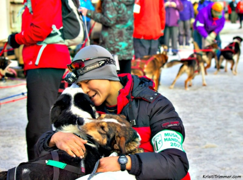 For the love of the dogs and dog mushing. These dogs are well loved and cared for #dogmushing #iditarod