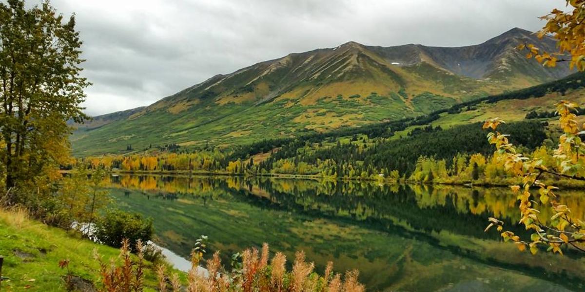 Summit Lake Alaska Reflection