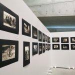 Museo Pitagora, prorogata la mostra dedicata al Premio Crotone