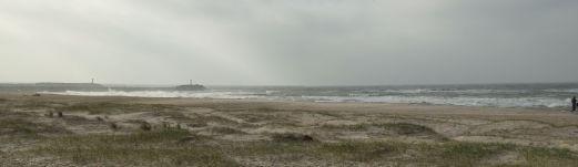 Wellen und Wind vor Hvide Sande