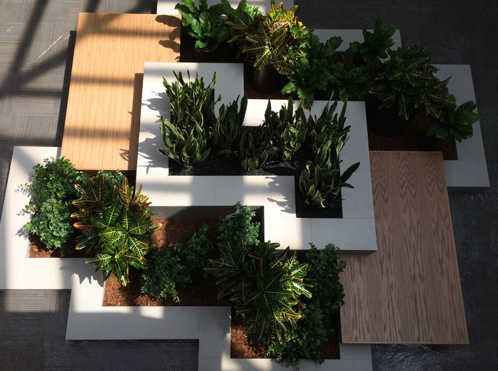 Tropical plants in a large planter in a modern corporate office
