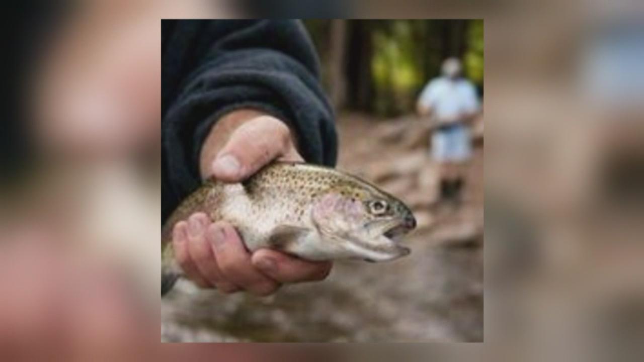 fishing_609875