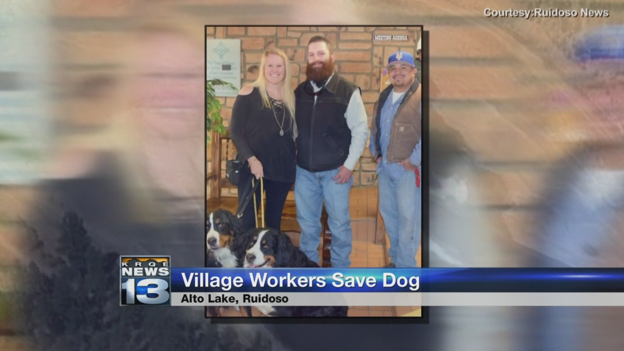 village workers save dog_799646