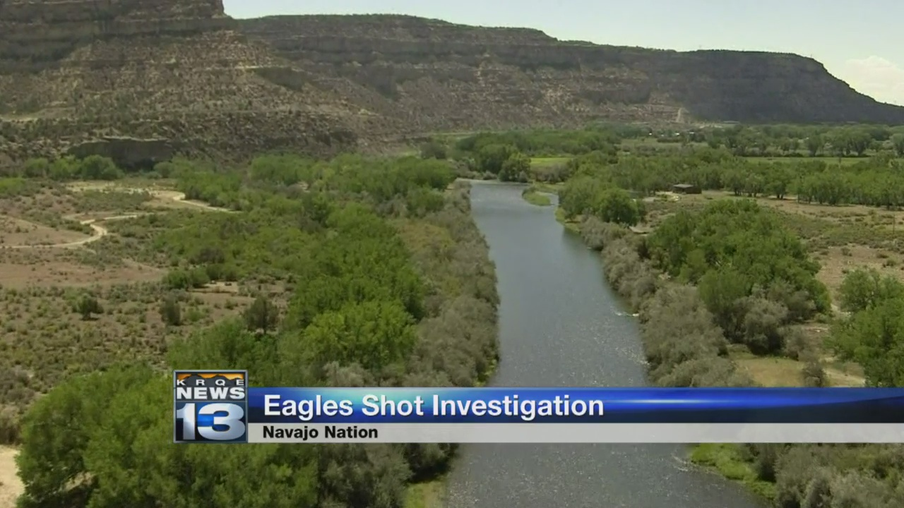 eagles shot_1522087585630.jpg.jpg