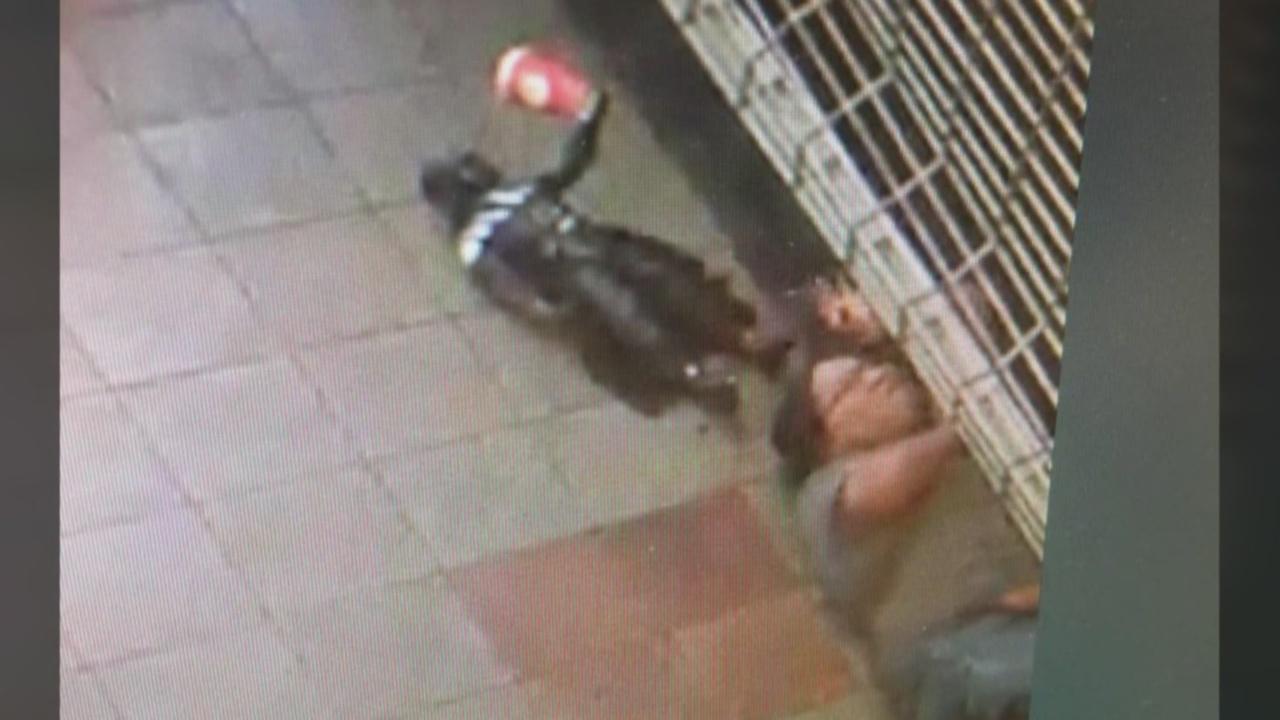 Thief steals coffee shop's Darth Vader_1533077334119.jpg.jpg